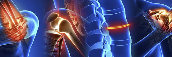 The Musculoskeletal System Healing
