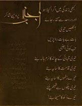 New Urdu Poetry - screenshot thumbnail 06