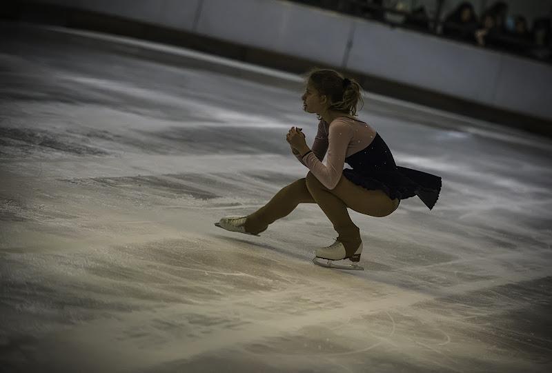 Volare sul ghiaccio di Gianva