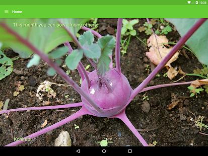 Gardroid – Vegetable Garden 7