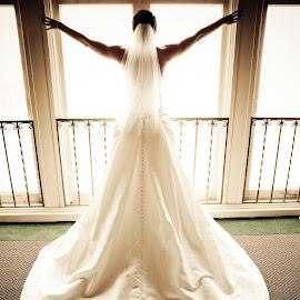 Wedding Dress Light by Wilson Silverthorne - Wedding Bride ( bride, dress, light, silhouette )