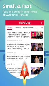 NewsDog – Latest News, Breaking News, Local News 4