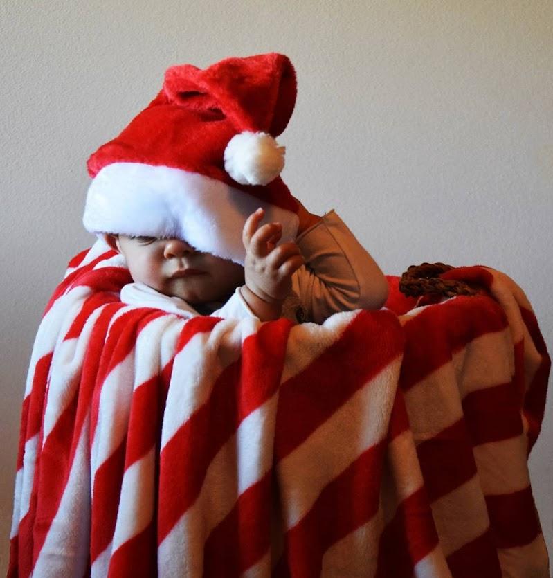 Aspettando il Natale di francesca_vigolo