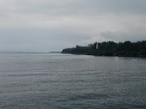 Photo: Grey morning off the north shore of Clapperton Island