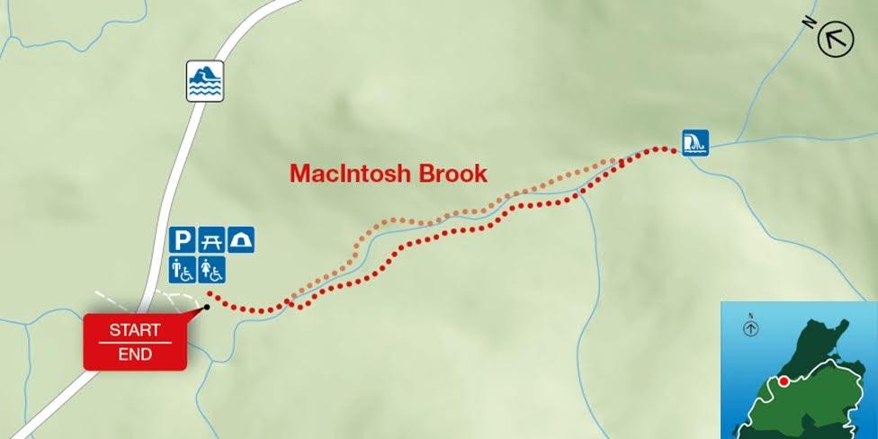 MacIntosh Brook, Park Narodowy Cape Breton Highlands