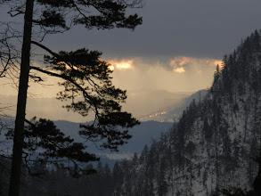 Photo: Mały Sosnów, Pieniny