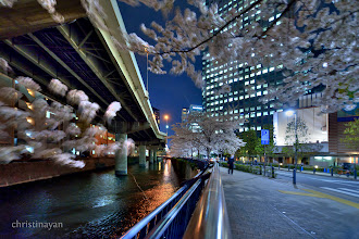 Photo: Sakura Metropolitan Expressways Metropolitan highway in the night may be shows the future world. I believe that concrete and cherry blossom is good combination as landscape. Adding, night time shows better. ということで、昨日の先生の写真をもとに行ってみました(^^) 夜の桜高架は絶品ですよね。阪神高速でも撮りに行きたいなあ。桜ノ宮あたりあったような。 #elevatedexpressways     #100tokyo   #cooljapan