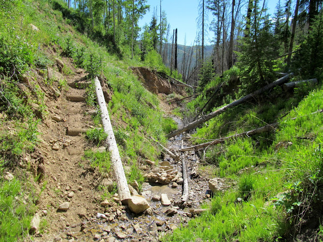 Trail crossing Flood Canyon