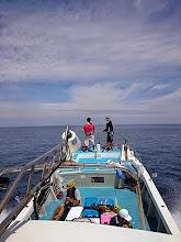 Photo: ヒラスの喰いがイマイチ。 ・・・大移動中。