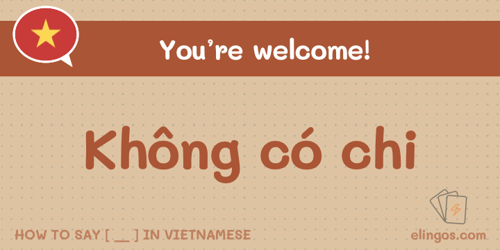 "Formal Response to ""Thank you"" in Vietnamese"