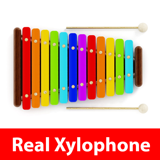 Real Xylophone Play