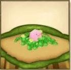 ピンクひよこ