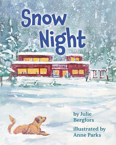 Snow Night cover
