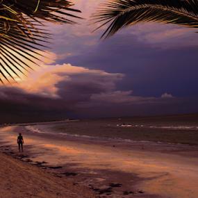 by Jim Signorelli - Landscapes Sunsets & Sunrises ( beaches, night on beach, sunset, beach, #GARYFONGDRAMATICLIGHT, #WTFBOBDAVIS )