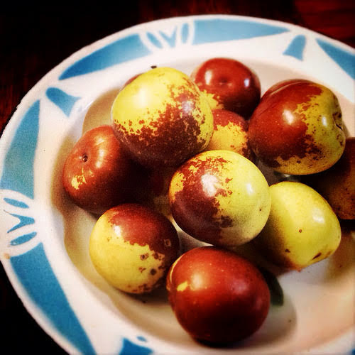 Winter Jujube, jujube, dates, chinese dates,  冬棗, chinese, fruit, seasonal