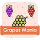 Download grapes mania For PC Windows and Mac