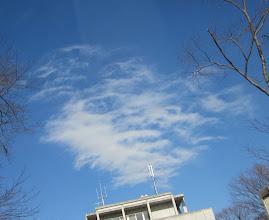 Photo: D館の上の雲の顔