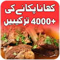 Pakistani food recipes - Urdu Recipes icon