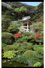 Photo: 乗誓寺 庭園
