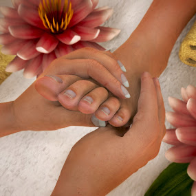Natasha getting Foot Massage at the SPA by Emily Fnm3d - Print & Graphics All Print & Graphics ( bowl, foot, treatment, therapist, feet, beauty, relaxation, relaxing, health, day spa, massage, lotus, hands, female, waterlilly, resort, treament center, loofah, flowers, therapy, towels, spa )