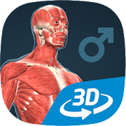 App Human body (male) educational VR 3D APK for Windows Phone