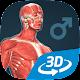 Human body (male) educational VR 3D apk