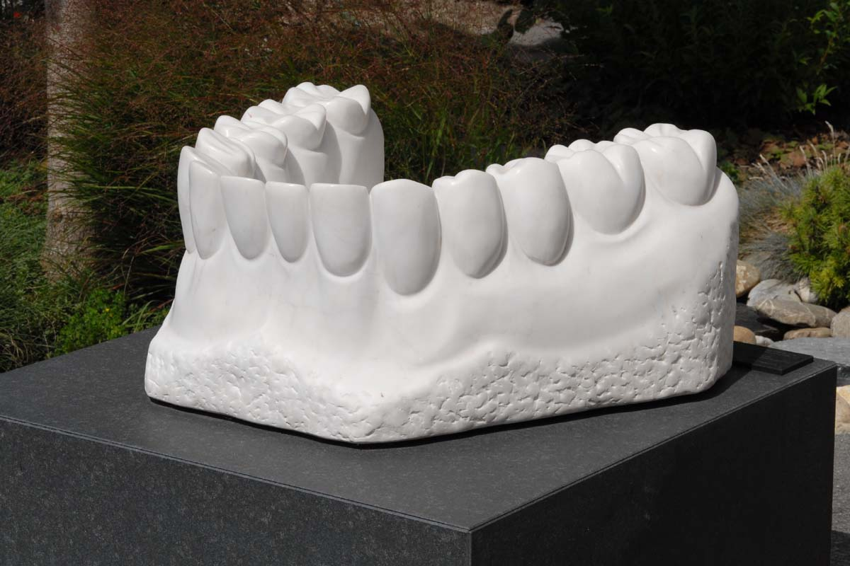 An amazing sculpture of a bottom row of teeth from bigfoto.com