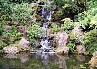 Photo: Japanese Garden, Washington Park, Portland