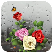 Rose Live Wallpaper with Waterdrops