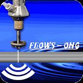Flows Ong SG