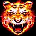 Tiger Feed icon