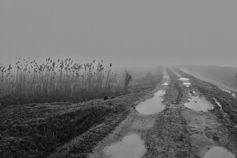 percorsi di pioggia di antonioromei