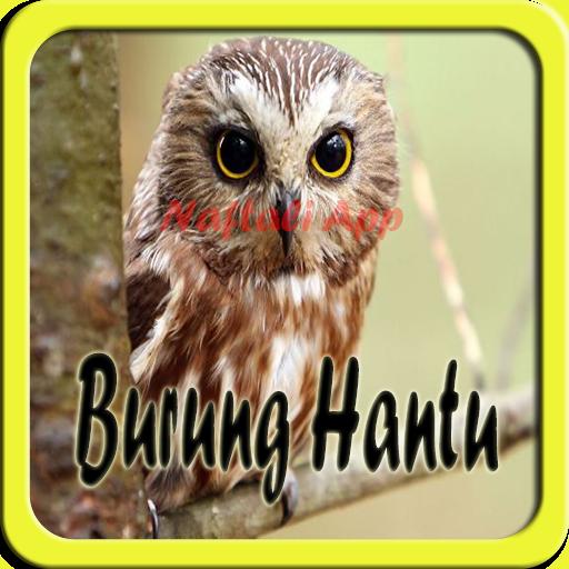 Suara Burung Hantu NEW for PC