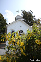 Photo: (Year 2) Day 334 - The Church in Roche Harbor