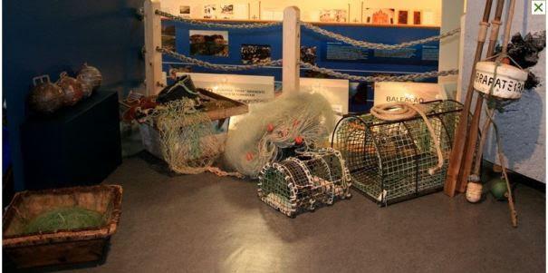 Museu da Terra e do Mar