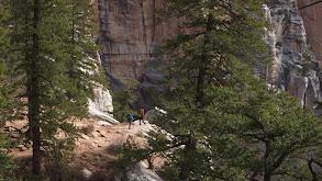 Grand Canyon National Park: Rim to Rim thumbnail