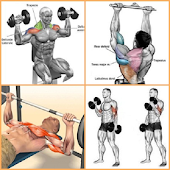 Bodybuilding Muscle Training