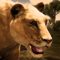 Ultimate Lioness Simulator icon