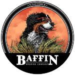 Baffin Flight