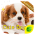 Cute Dogs GO Keyboard Animated Theme file APK for Gaming PC/PS3/PS4 Smart TV