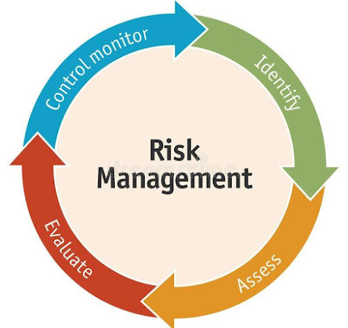 Graph showing Risk management cycle