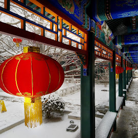 Red lantern  by Francisco Little - Instagram & Mobile Android ( red, corridor, color, blue, china, winter, lantern )