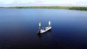 Everglades Isolation thumbnail