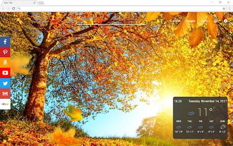 autumn fall wallpapers themes hd chrome插件下载crx 扩展介绍 插件迷