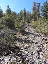 Photo: Climbing the northwest flank of Pine Mt.