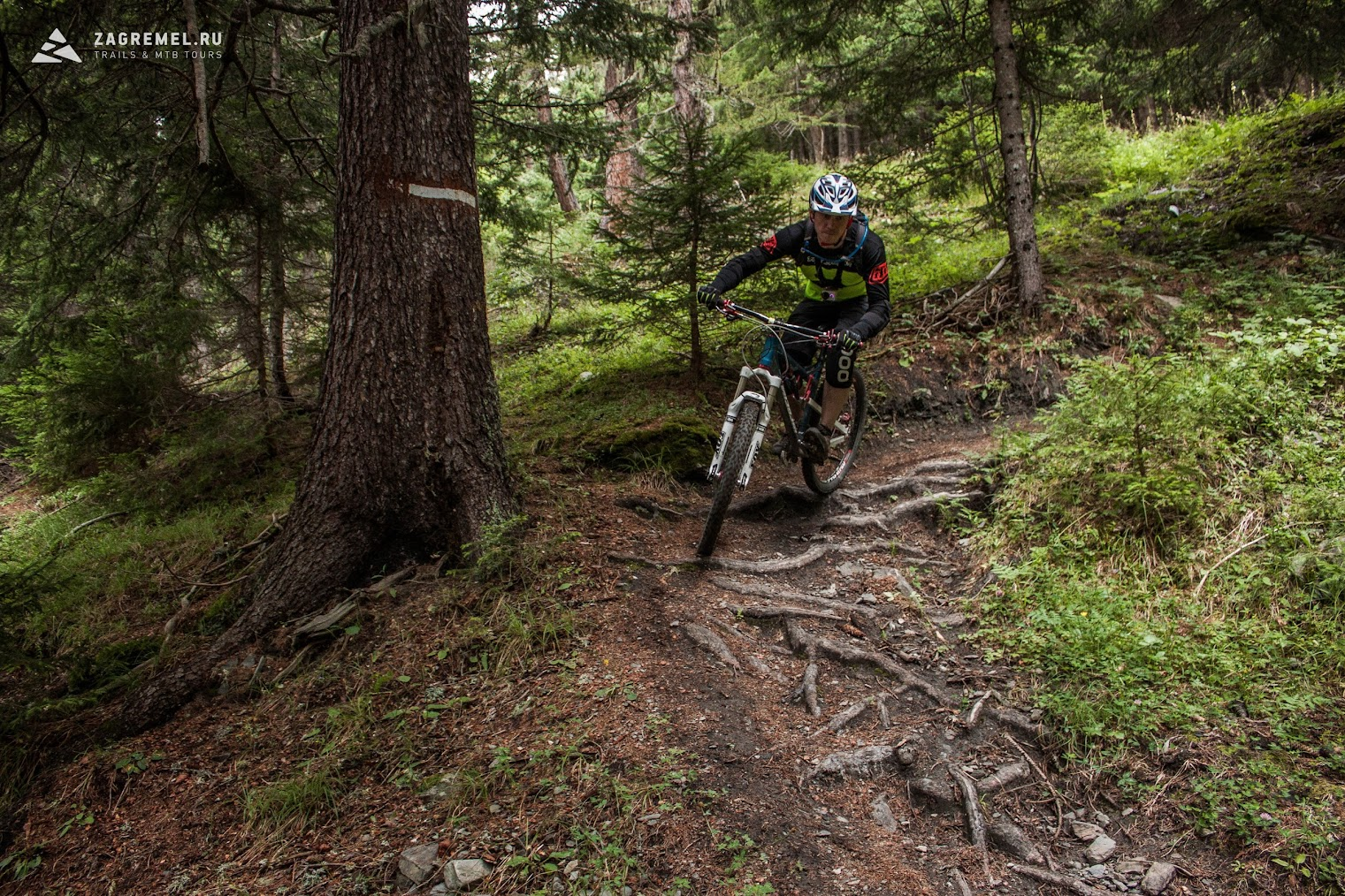Блог им. pustota: Как колобок Кувалду в Альпы выгуливал.