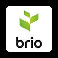 Brio Harvest