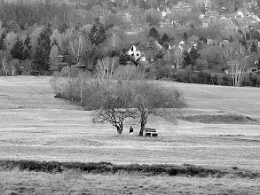 Photo: lonely wanderer  #benchsaturday // +Bench Saturdayby +Rainer M. Ritz #hqspmonochrome // +HQSP Monochromecurated by +Joy mum +Luis Vivanco S.      +Massimiliano Marsiglietti +Оксана Крысюкова +Nader El Assy #tree  #Goslar  #harzbilder
