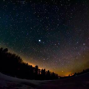Star Lit Sky by Sarthak Bisaria - Landscapes Starscapes ( fisheye, sky, northern lights, trees, night, venus )