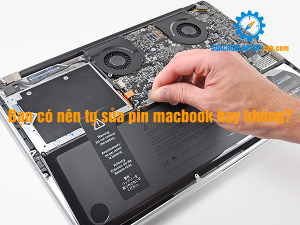 sua pin macbook